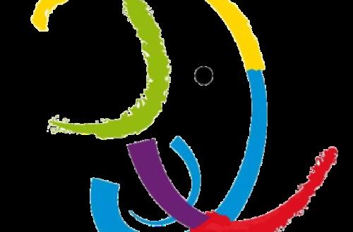 Article : Jeux de la francophonie : les 24 millions d'athlètes ivoiriens !